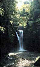 The 48 waterfalls of Takihataの画像